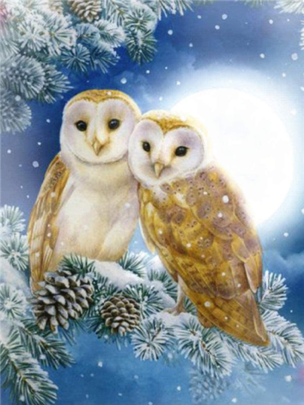 Jigsaw Puzzle with Picture Max 68% OFF 2000 Manufacturer regenerated product Wo Pieces-Two Owls-Puzzle