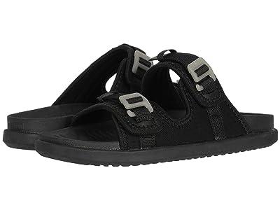 Native Shoes Davis