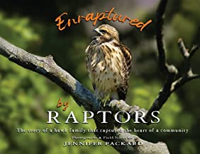 Enraptured by Raptors: The story of a hawk family that captured the heart of a community