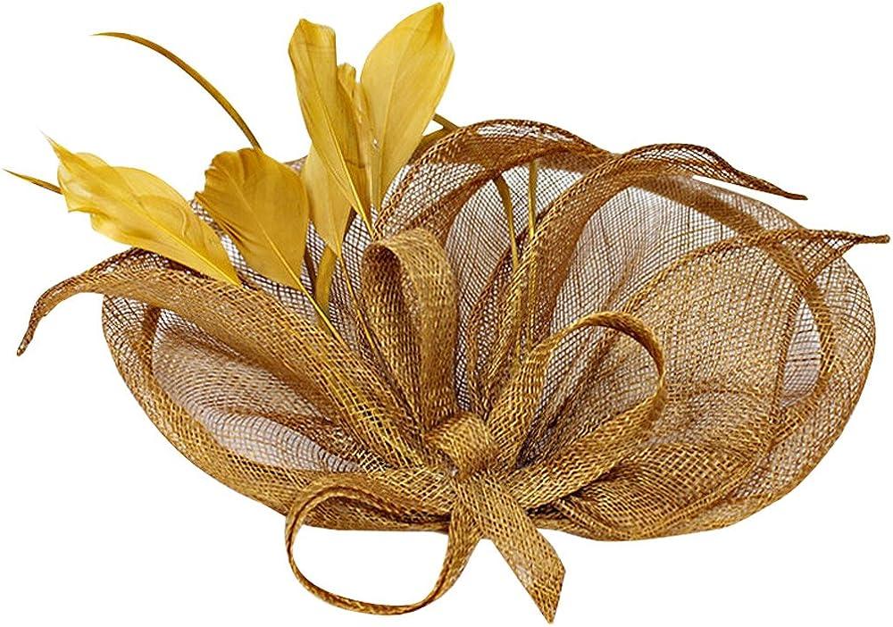 Wiwsi Fashion Hair Fascinator Clip Feather Party Pillbox Hat Derby Hat for Women