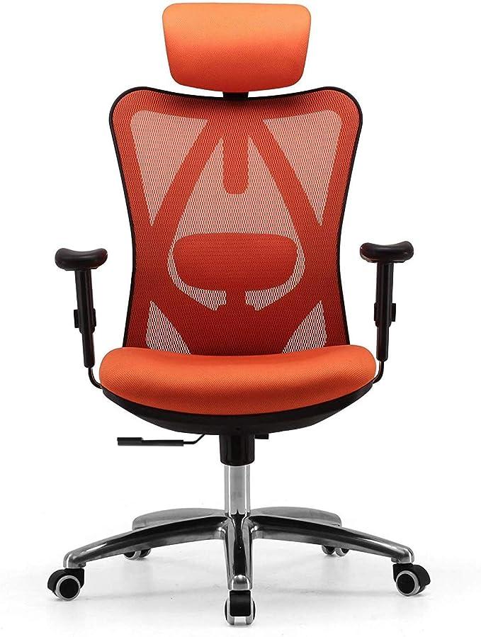 6877 opinioni per SIHOO Sedia da Ufficio Studio, Sedia Schienale Alto ergonomica con Supporto