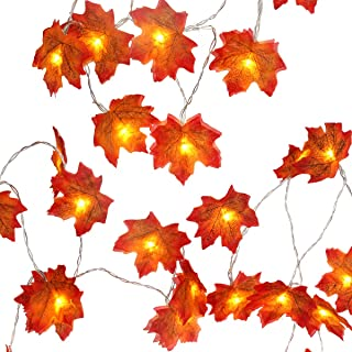 Szxc Maple Leaves String Lights - 20 FT 40 Steady/Flashing Led Lights - Battery Operated - Warm White - Fall Thanksgiving ...