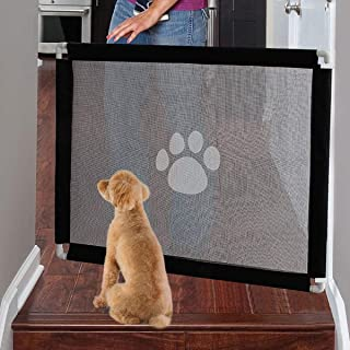 Guard Dogs For Your House