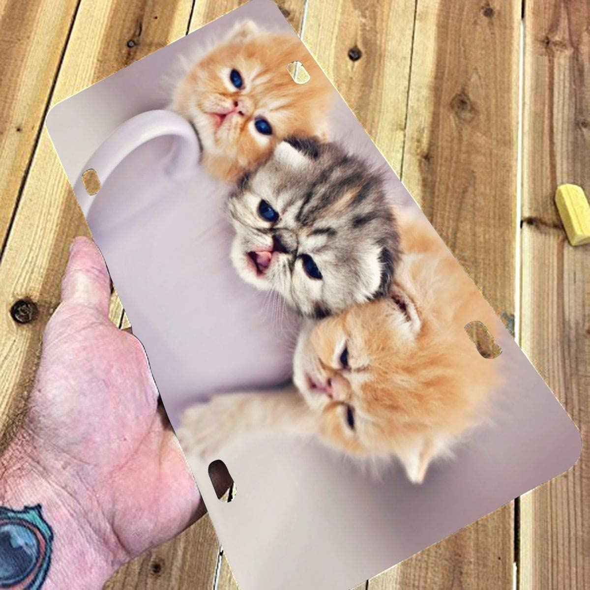 Cute Cat Customized USA Car Tag Miniisoul Wall Decoration License Plate Personalized Front License Plate 6 X 12 Aluminum License Plate