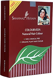 Shahnaz Husain Colourveda Natural Hair Color Burgundy (100 g / 3.527 oz)