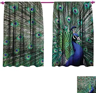 Peacock Window Curtain Fabric Peacock Displaying Elongated Majestic Feathers Open Wings Picture Drapes for Living Room W55 x L63 Navy Blue Green Pale Brown