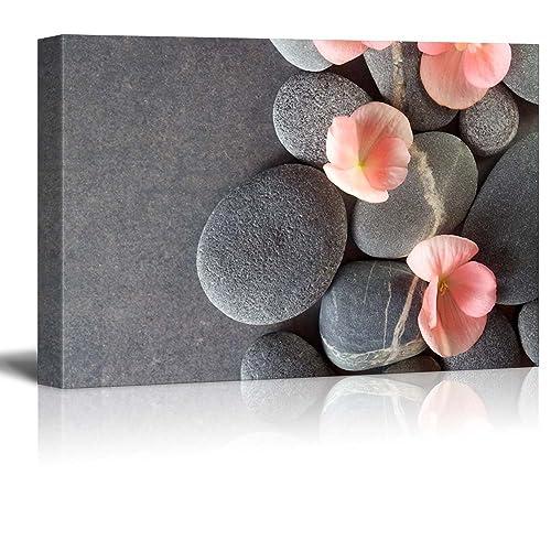 Coral Colored Wall Decor Amazon Com