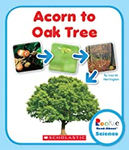 Acorn to Oak Tree (Rookie Read-About Science: Life Cycles)