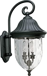 Progress Lighting P5829-31 2-Light Chain Hung Lantern with Optic Hammered Clear Glass, Textured Black