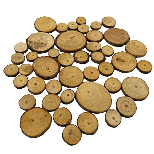 Segolike 50 Pieces Natural Wood Log Slice Tree Chic Wooden Discs Wedding Pyrography Table Centerpiece Cake Stand 2-4cm