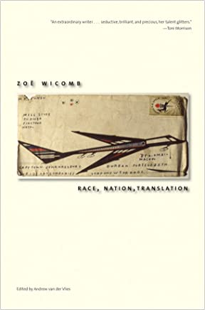 Race, Nation, Translation: South African Essays, 1990-2013 (English Edition)