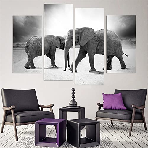 Elephant Living Room Decor: Amazon.com