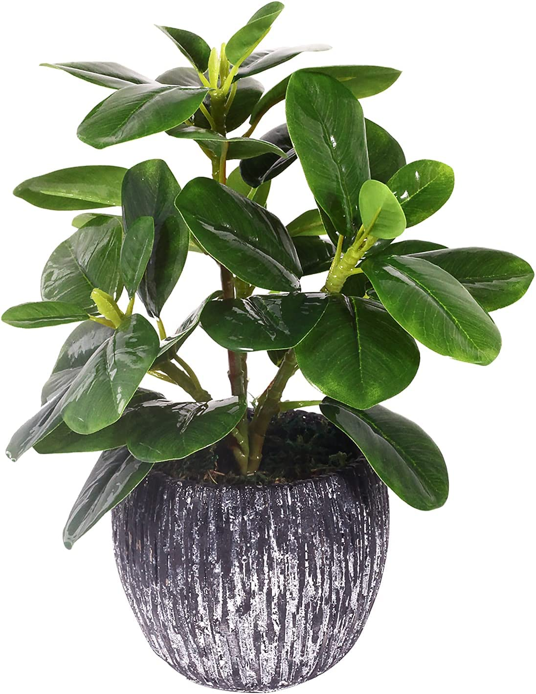 Artificial Potted Plant, Real Touch Artificial Oak Leaves Waterproof Fake Plants Indoor Outdoor, Eco Friendly Modern Concrete Greenery Plant Pots for Office Home Kitchen Shelf Farmhouse Decor