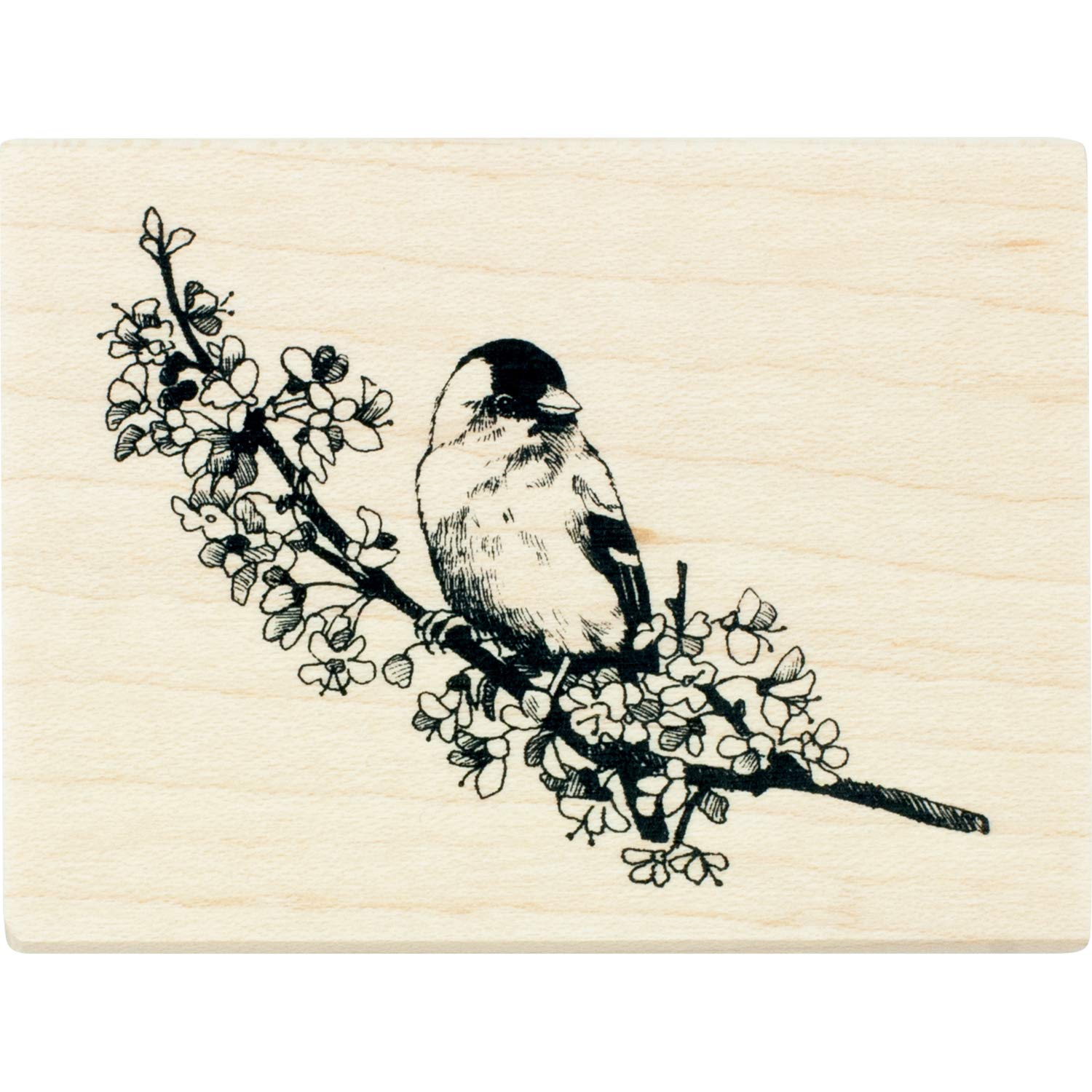 Inkadinkado Finch on a Branch Mounted Rubber Stamp for Card Making and Scrapbooking, 3'' x 2.25'' x 1''