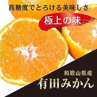 和歌山県産 有田みかん 高糖度でとろける美味しさ 極上の味 のし対応致します (5kg)