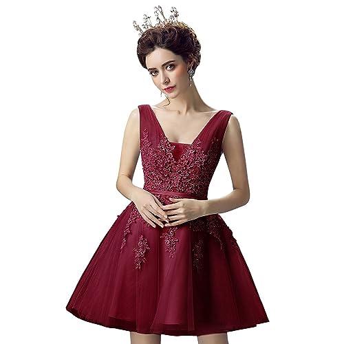 68d62042a Quinceanera Dresses for Guest  Amazon.com