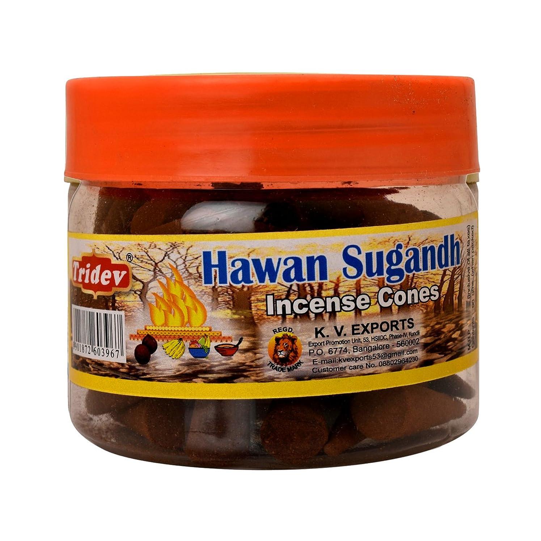 ご予約圧縮するサンダルTridev Hawan Sugandh Incense Cones Jar 90グラムパック