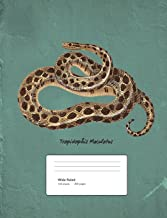 Snake Boa Constrictor Composition Book Wide Ruled: Notebook 200 pages 100 sheets