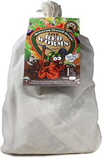 Composting worms - 600 red wigglers