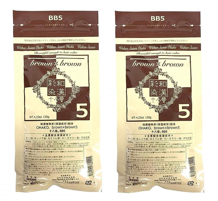 嵐の砂の生産的【2個セット】グランデックス 和漢彩染 十八番 120g BB5
