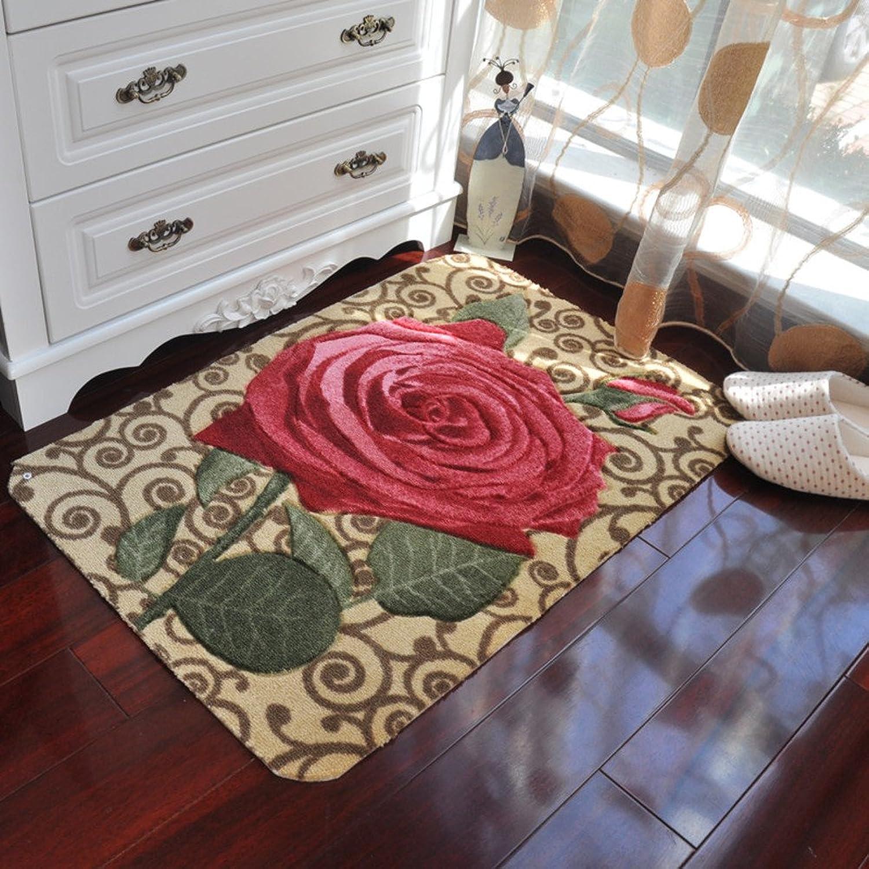 Doormats Water-Absorption Door mat Indoor mat for Bathroom Kitchen -A 78x118cm(31x46inch)