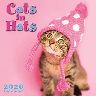 2020 Mini Wall Calendar: Cats in Hearts