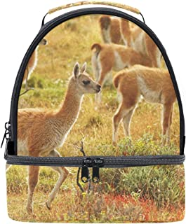 Mydaily Kids Lunch Box Wild Guanacos Reusable Insulated School Lunch Tote Bag