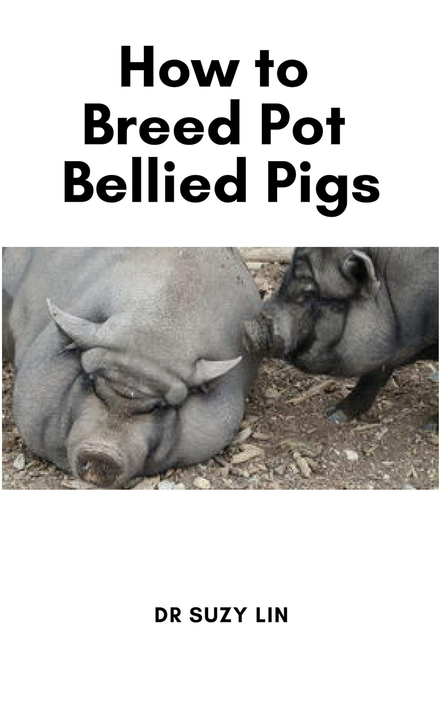 How to Breed Pot Bellied Pigs