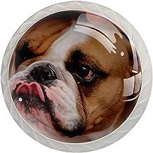 FURINKAZAN Kast Knop Trek Handvat Franse Bulldog Mooie Bruin 4-Pack Keuken Kastdeur