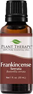 Plant Therapy Frankincense Serrata Essential Oil 100% Pure, Undiluted, Natural Aromatherapy, Therapeutic Grade 30 mL (1 oz)