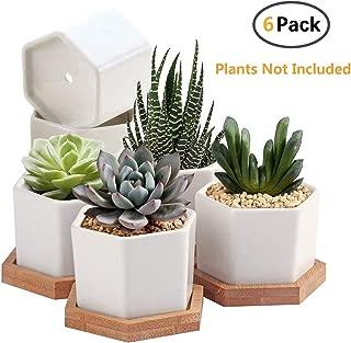 Succulent Plant Pots,OAMCEG 2.75 inch Mini Succulent Planter, Set of 6 White Ceramic..