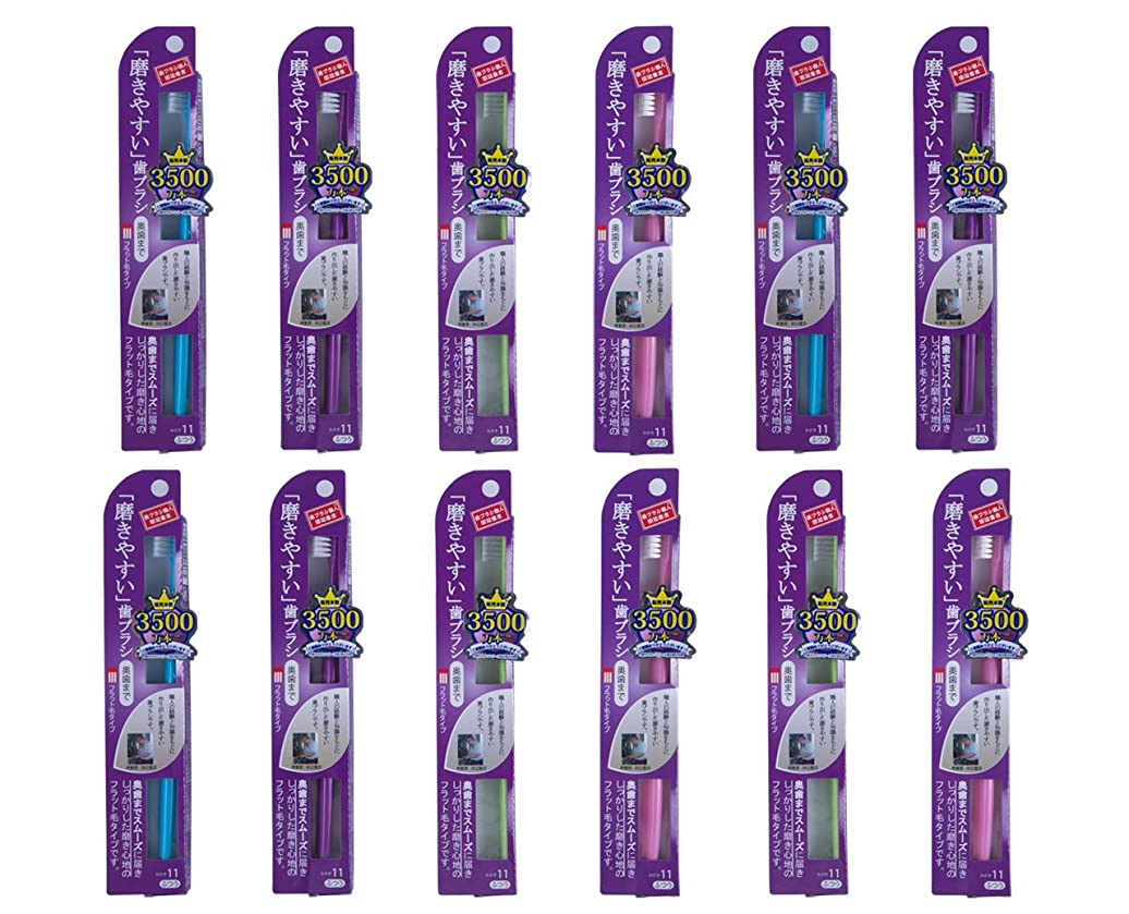 アルネ先定規歯ブラシ職人Artooth 田辺重吉 磨きやすい歯ブラシ フラット毛タイプ  LT-11 (12本パック)