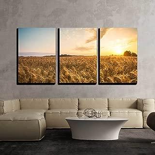 Best golden wheat field Reviews