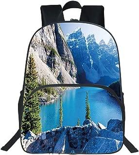 Oobon Kids Toddler School Waterproof 3D Cartoon Backpack, Moraine Lake Banff National Park Canada Mountains Pines Valley of the Ten Peaks, Fits 14 Inch Laptop