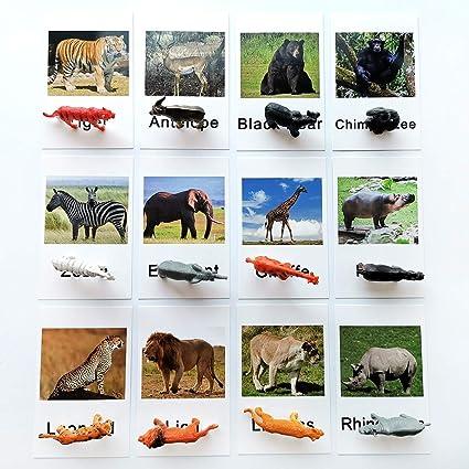 12 Pieces Miniature Animals Montessori   Animal Match Cards and Figurines