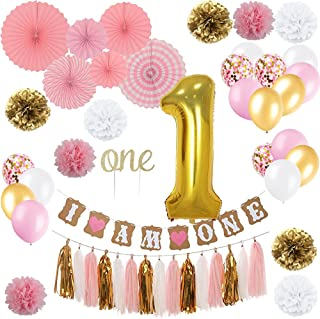 """YAYJOY First Birthday Decoration Set for Girl,Number 1 foil Balloon, I AM ONE Banner, """"ONE"""" Cake Topper,Fiesta Pink Hanging Paper Fan Flower,Tassel Garland,Pom Poms and Latex Balloon"""