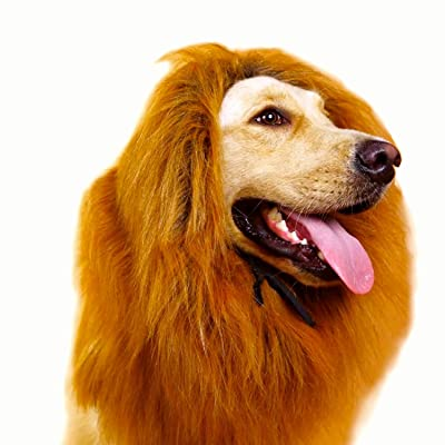 The Lion King Mane Dog Costume - Lion Wig with ...