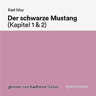 Kapitel 2: Der schwarze Mustang (Teil 90)