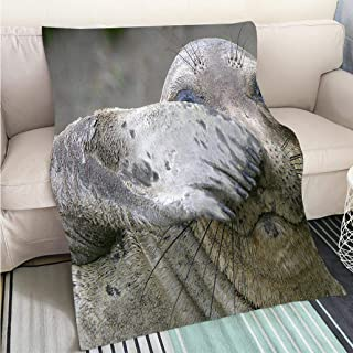 Custom homelife Abstract Home Decor Printing Blanket Peek a Boo Perfect for Couch Sofa or Bed Cool Quilt