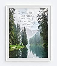 I Went to the Woods Because I Wished to Live Deliberately, Henry David Thoreau Quote Photography Print, Unframed, Coastal Beach Dock Wall Art Decor Poster Sign, Inspirational Gift, All Sizes