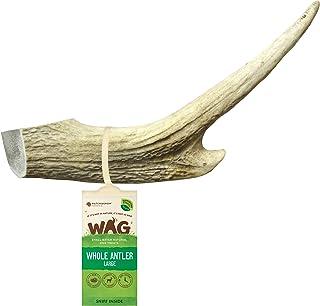 WAG Long Lasting Whole Antler Dog Treat, 4 Pack, Large
