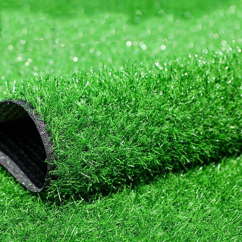彼テーマ天才JLDN 人工芝マット、人工フェイクグラスカーペット ドレン穴付き ラバーバッキング 屋外の庭の装飾 3センチメートル/ 1,18inパイル高さ,Summer Grass_3x2m/9x6ft