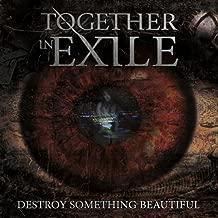 Destroy Something Beautiful [Explicit]