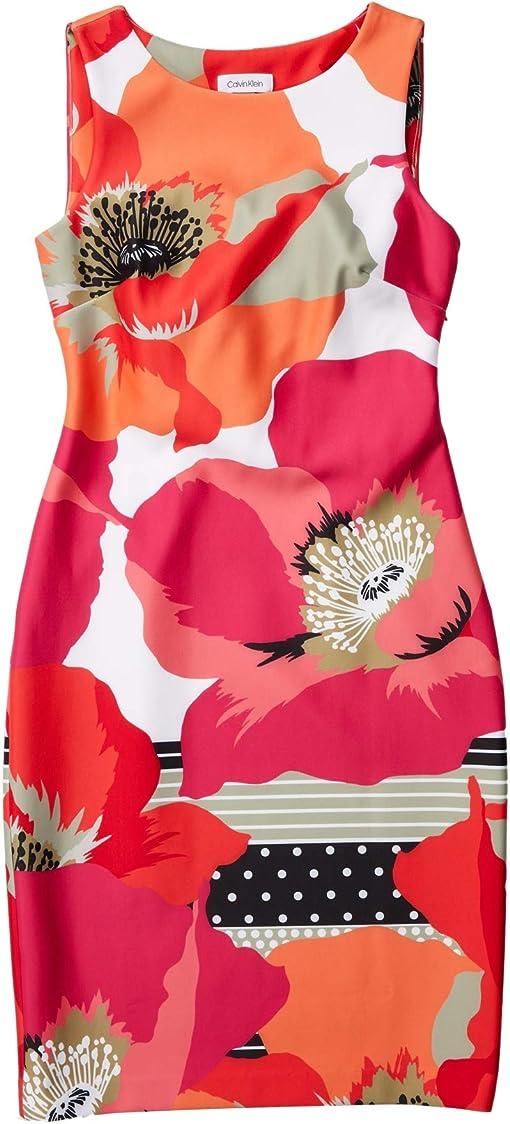 Hibiscus Multi