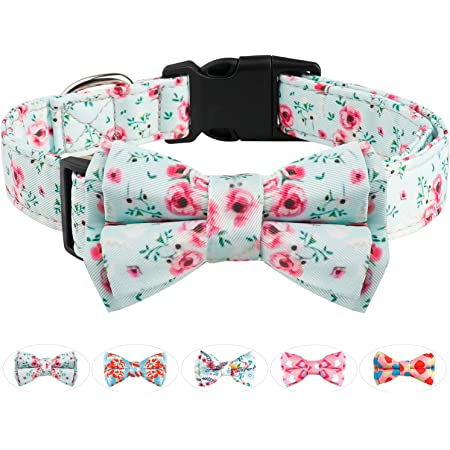 Valentine/'s Day  Bow Tie  Dog Bow Tie  Dog Bow  Hearts  Dog Collar Bow Tie  Vintage  Pink  Love  Cute  Bow  Winter  Mint Green