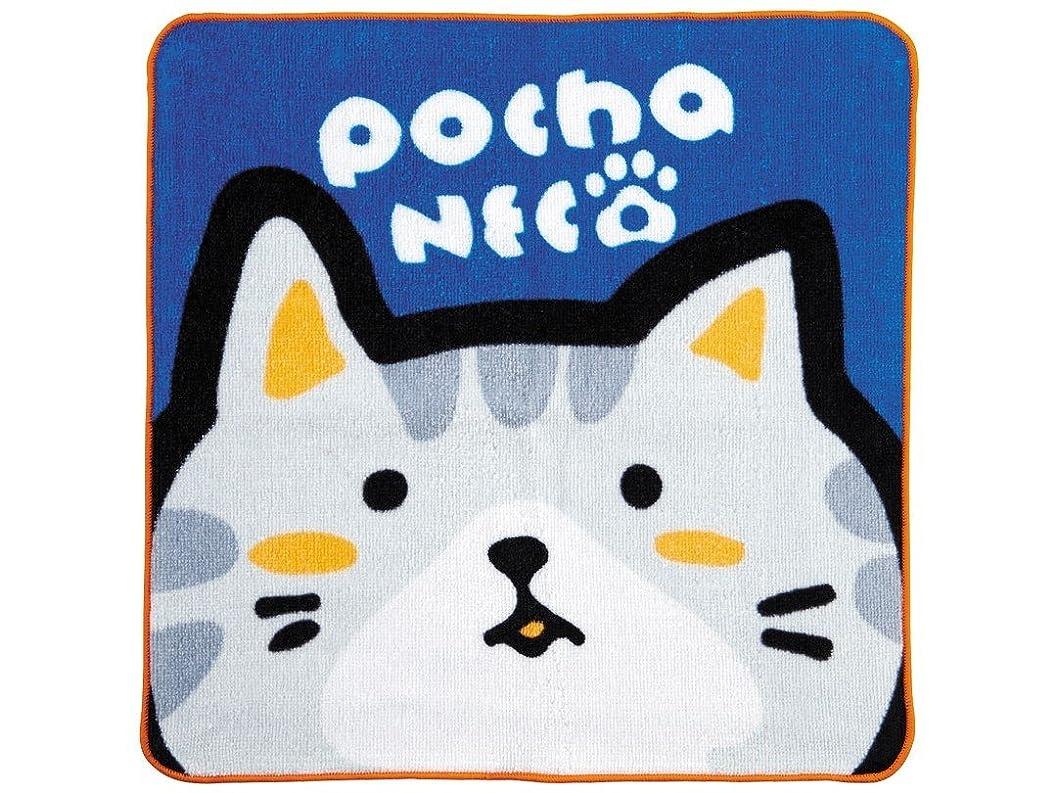 苦難パンツリーフレットゴーセン ぽちゃ猫 ハンドタオル サバ(サイズ:W30×H30cm)GOSEN GOS-NTH01-SABA