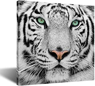 Kreative Arts White Tiger Canvas Art Print Large Animal Wall Art Deco Canvas Picture Stretched on Wooden Frame as Modern Gallery Artwork Ready to Hang 24x24inch