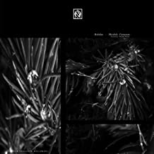 Mandelbrot Set (Original Mix)