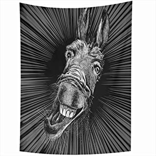 Ahawoso Tapestry 60x80 Inch Wild Smile Gray Laugh Head Humor Drawing Fun Teeth Ass Crazy Donkey Animals Wildlife Funny Farm Face Mule Cute Tapestries Wall Hanging Home Decor Living Room Bedroom Dorm