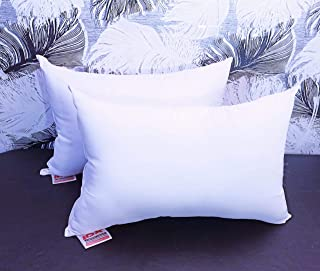 JDX Premium Hotel Quality Hollow Fiber Pillow Set of 2-16x24